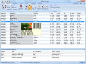 La scheda di magazzino del nostro software gestionale a basso costo.